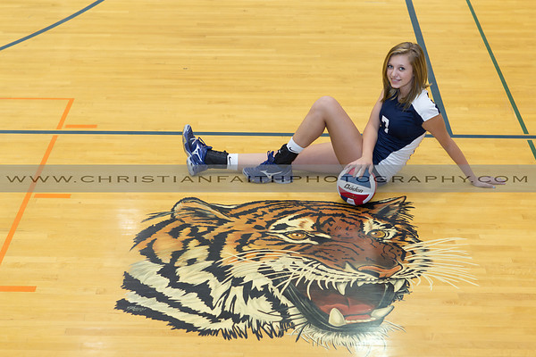 Mansfield Tigers Volleyball 2012