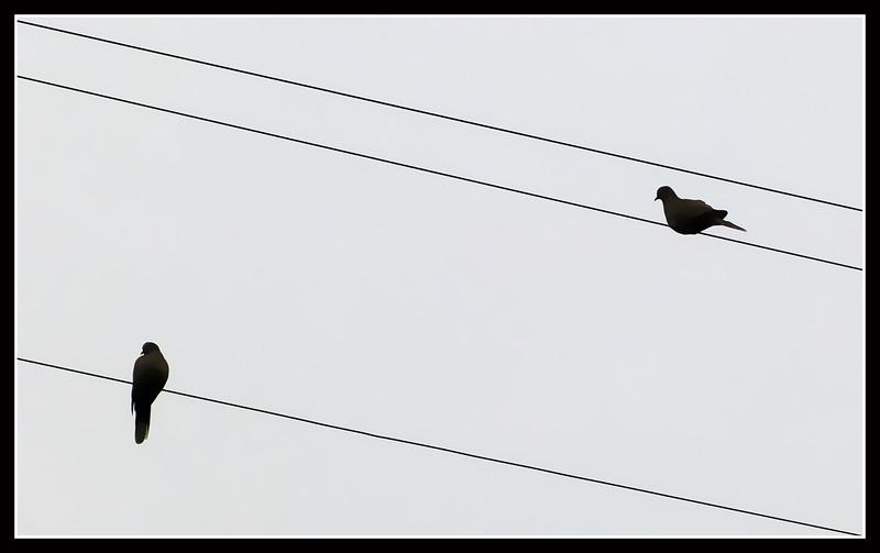 2012-04-Costa-Argento-31.jpg