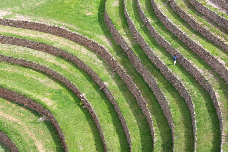 Terraces at Moray.jpg