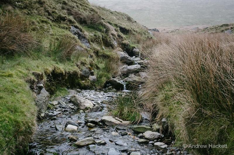 slipperymouse-ranger-path-32.jpg