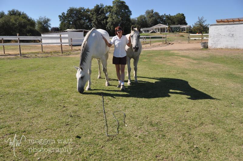 EB&Horses-165.jpg