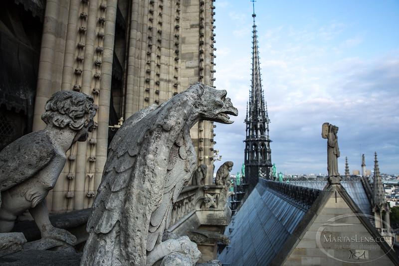 Notre Dame, Paris-18.jpg