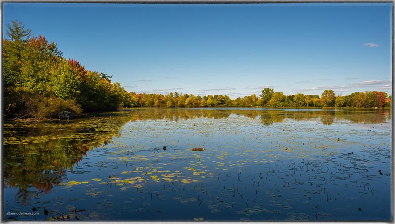 Mud Lake