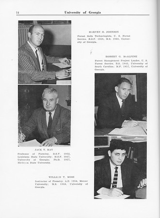 1961 Cypress Knee