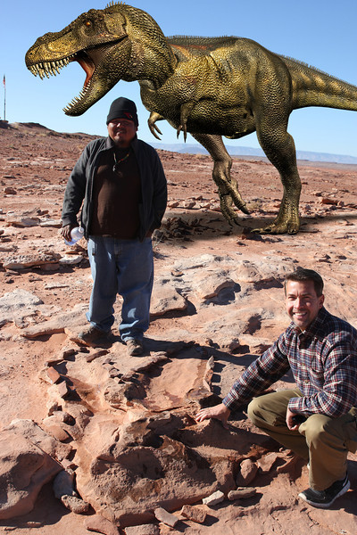 Dinosaur Tracks - Tyrannosaurus Rex crossing