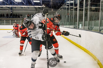 12-19-17 Delano v Minneapolis Boys Hockey