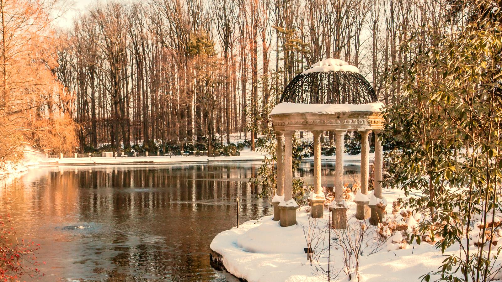 费城长木公园,那年冬季