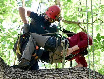Photos: Aerial Rescue Training for Arborists in Longmont