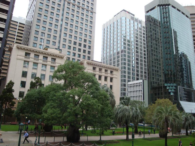 Brisbane is a tropical capital city