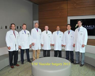 Vascular Surg 2013