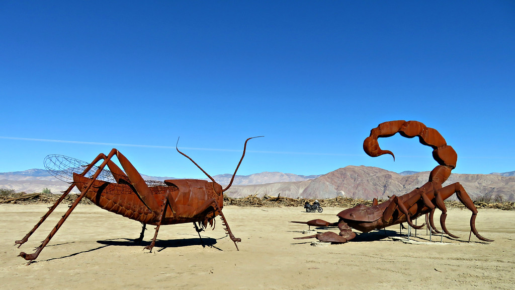Anza-Borrego Desert - Giant Scorpion and Grasshopper