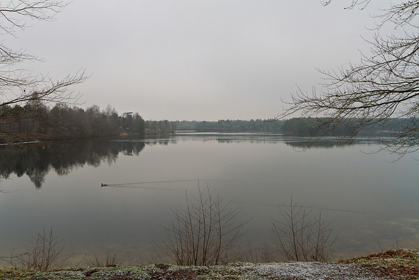 Landscape 2013