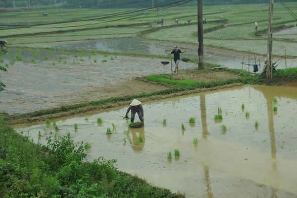 June 25 Hanoi
