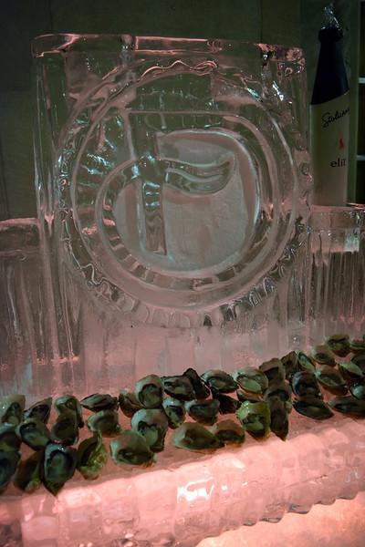 DC-Ice-Sculpture - 4.jpg