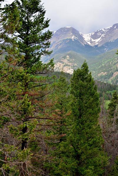Colorado 06-16-2013 58.JPG