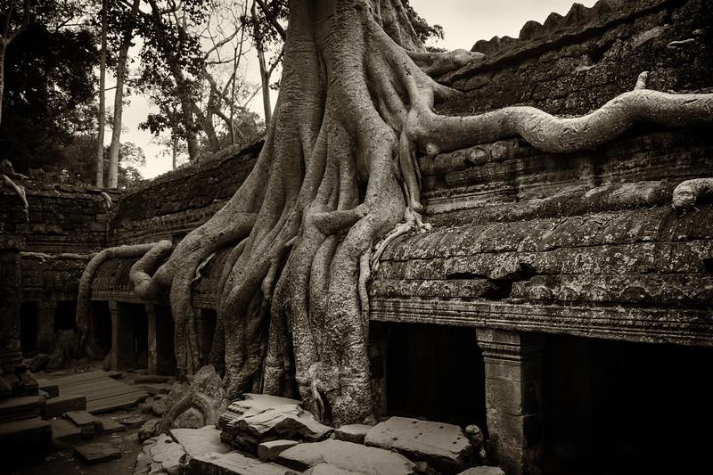 Cambodia-9720-Edit.jpg