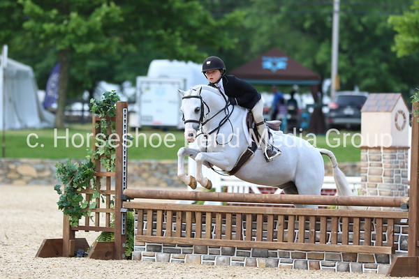 2019 Loudoun Benefit Horse Show -- Sunday -- Salem Hunter