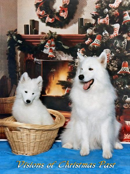 Sultan-Luke-Christmas-painting.jpg