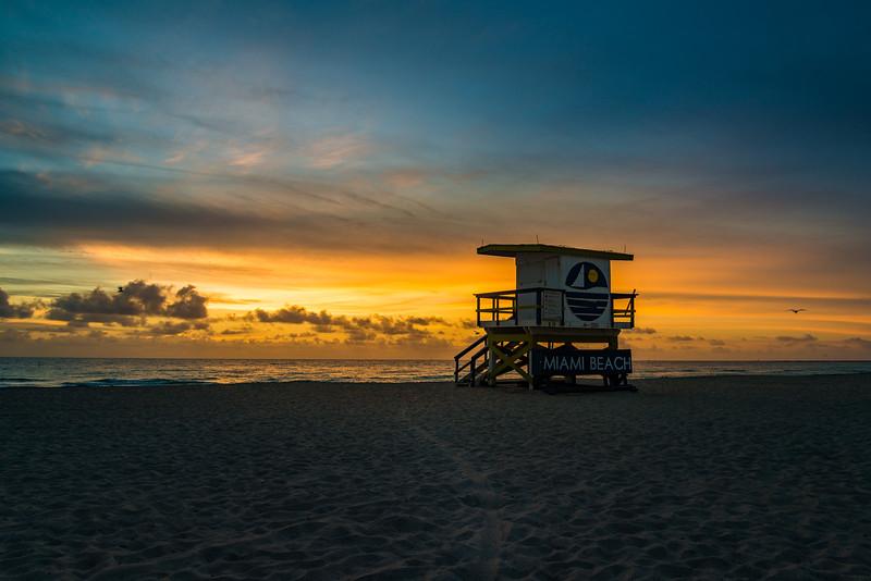 Miami-132.jpg