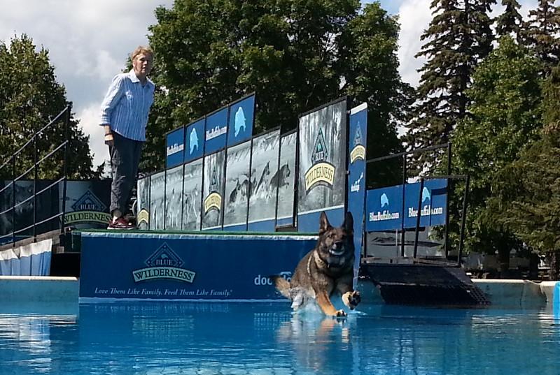 2015.8.5 Winnebago County Fair Dock Dogs (1).jpg