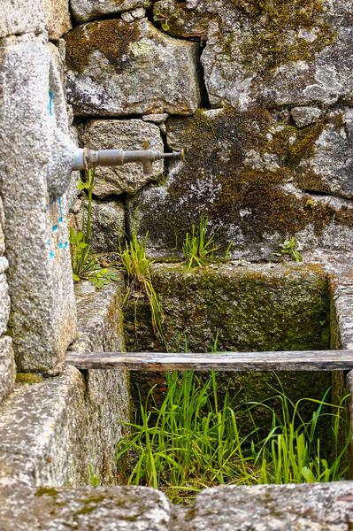 Vouzela-PR2 - Um Olhar sobre o Mundo Rural - 17-05-2008 - 7438.jpg
