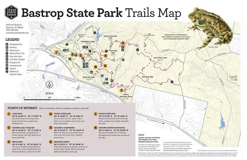 Bastrop State Park (Trails)