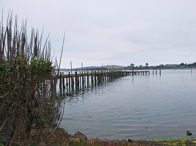 Bodega Bay Oct 2010