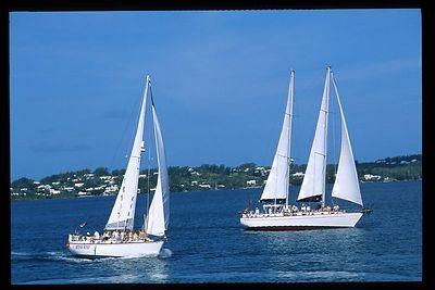 2001 Bermuda