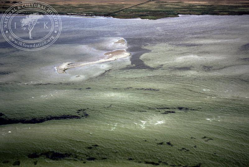Coastal area and seabed – Barsebäck to Landskrona (1990) | PH.1113