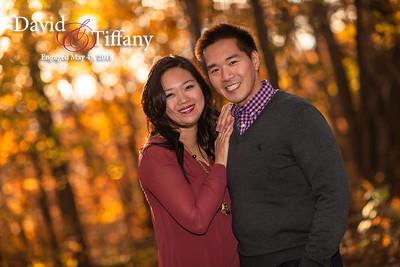 David and Tiffany: Engaged (Fall Session)