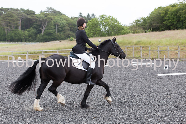 Gower Riding Club 21 June 2015