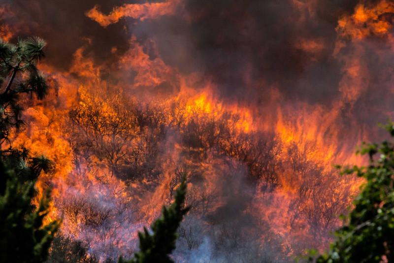 Camarillo Creek Fire (15).jpg