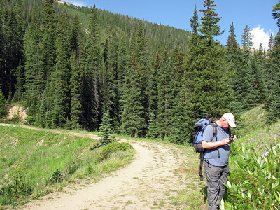 Butler Gulch Trail - August 10, 2014