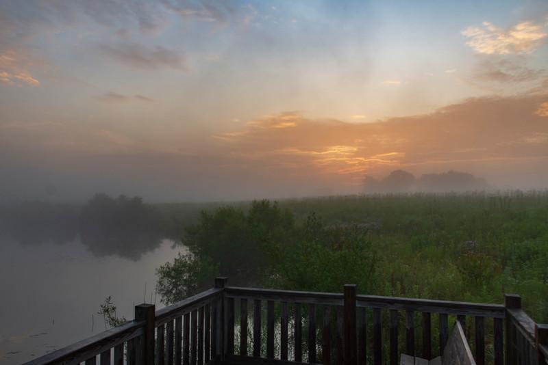 Sunrise-SpringfieldBog-July4h.jpg