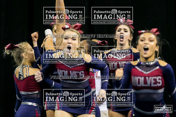White Knoll High School State Cheer 2018
