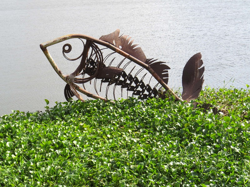 This large fish sculpture is appropriately at the lake.