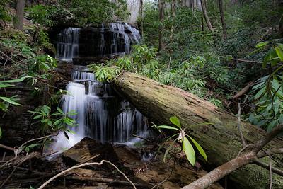 Corbin Creek and Queen Branch
