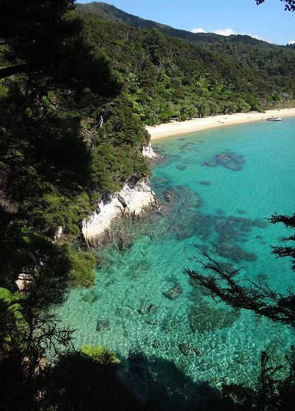 7 Tonga coastline.JPG