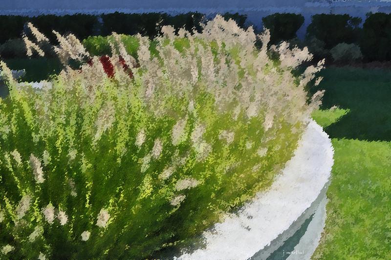 dream gardens 40 2-5-2011.jpg
