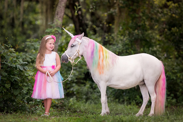 Unicorns July 2020 - Estevez