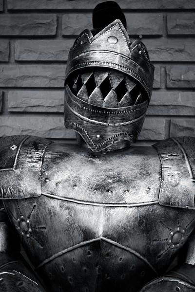 knight_2434793785_o.jpg