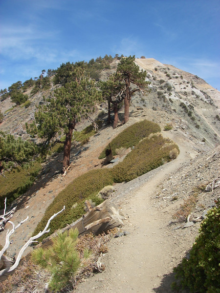 """Mt. San Antonio or better known as Mt. Baldy is the """"crown jewel"""" of the San Gabriel Mountains in Southern California"""