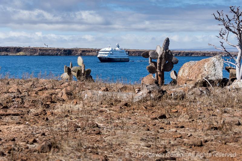 Galapagos 0719 SJGoldin-442.jpg