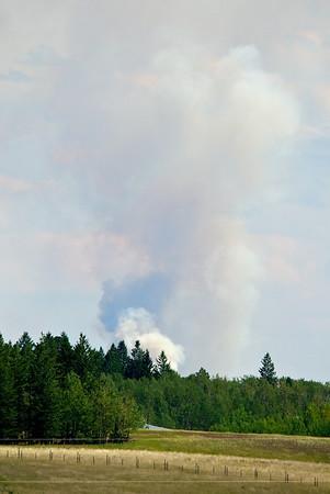 forestfire2012
