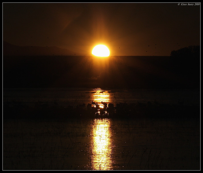 Sunrise, Bosque Del Apache, Socorro, New Mexico, November 2010
