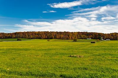 Sagamore Farms