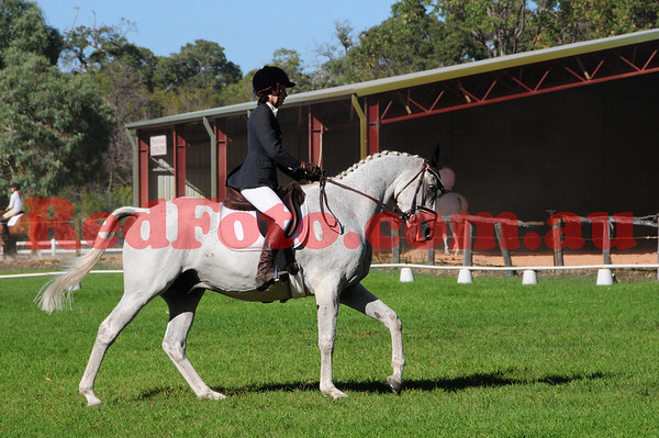 Baldivis PC Dressage Series