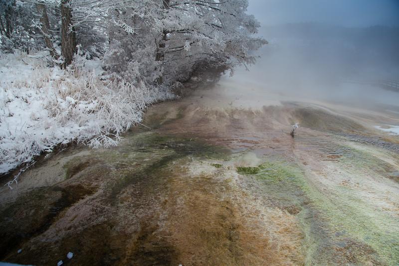 Mammoth terraces