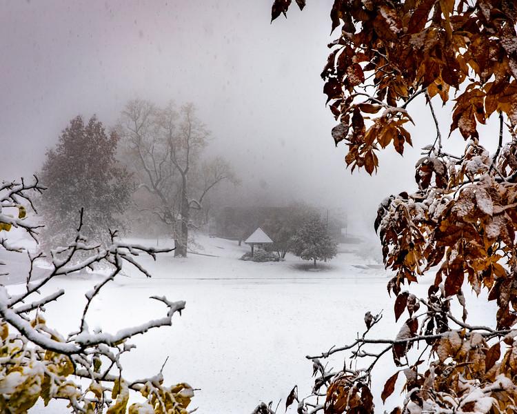 20_1st-Snow-22.jpg