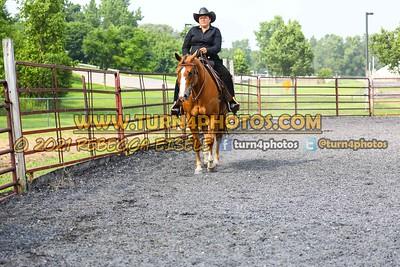 Open Ranch Horse Rail Pleasure 07/25/21